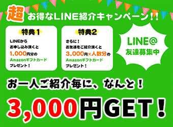 loan_campaign
